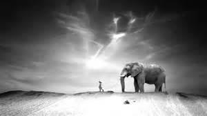 ten walls walking with elephants original mix