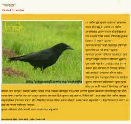My Favourite Bird Sparrow Essay by Essay On Favourite Bird Parrot Educationcoursework X Fc2