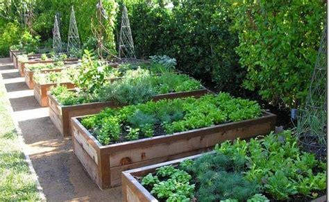 decker rd. seeds vegetable garden ideas   Decker Rd. Seeds