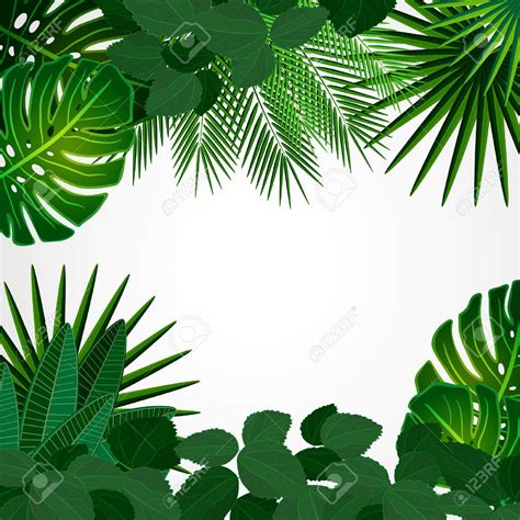 1325003905 fleurs tropicales calendrier anniversaire 33337538 tropical leaves floral design background stock