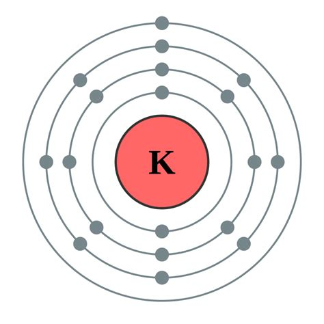 bohr diagram for potassium file electron shell 019 potassium no label svg