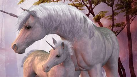 imagenes de unicornios con alas los unicornios existieron afirma la ciencia youtube