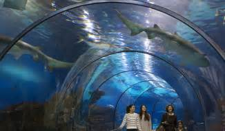l aquarium l aqu 224 rium de barcelona visit barcelona tickets