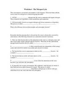 the nitrogen cycle worksheet abitlikethis