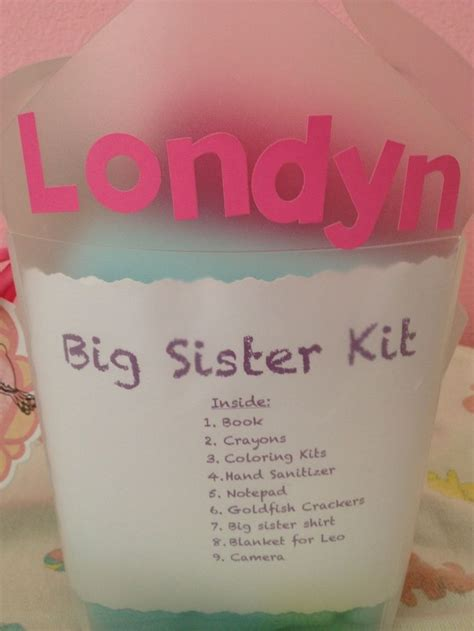 you bid big kit baby shower gift idea for the big