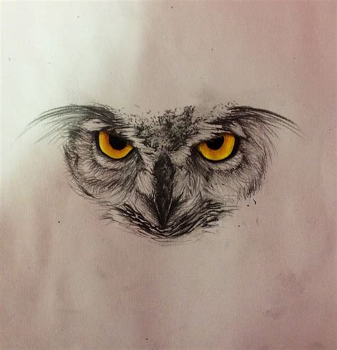 owl sketch by ladyjekyll1124 on deviantart