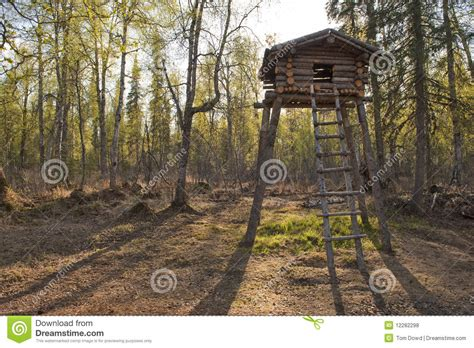 Free Hunting Cabin Plans Wooden Tree Fort Stock Photo Image Of Raised Nature