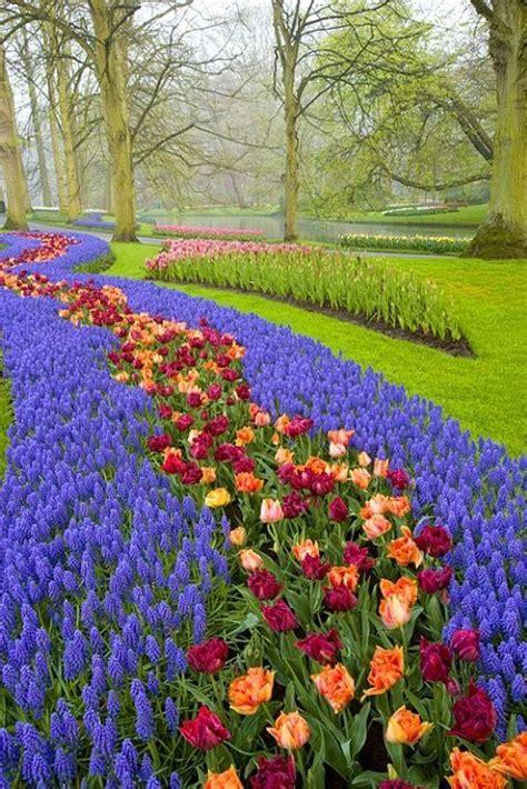 17 Beste Afbeeldingen Over Keukenhof Op Pinterest Tuinen Netherland Flower Garden