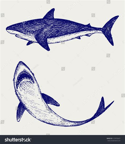 how to draw a doodle shark shark doodle gallery