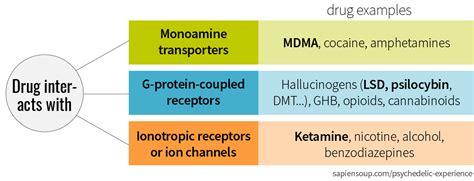 Hetamine Detox Diet melting benzodiazepines maple suyrup diet