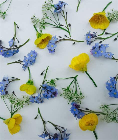 pattern of flower arrangement photography challenge flower pattern arrangements