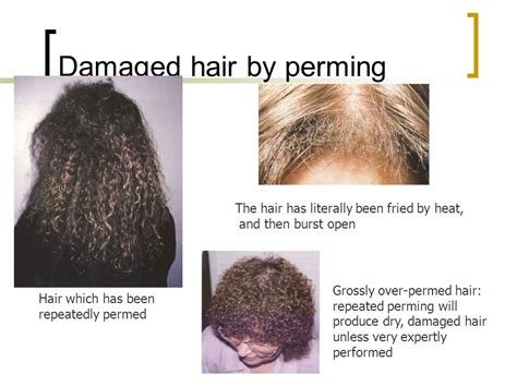 what is the best perm for damaged hair perm neutralising hair unit ppt video online download
