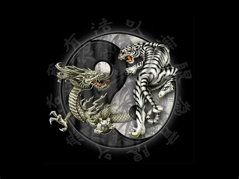 tattoo dragon tiger yin yang dragon tiger tattoos yin yang all about dragon world