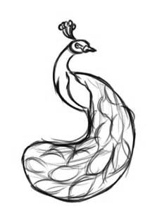 National Bird Of India Outline by Peacock Sketch Clipart Best