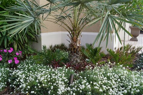 brevard county landscape design services landscaping and