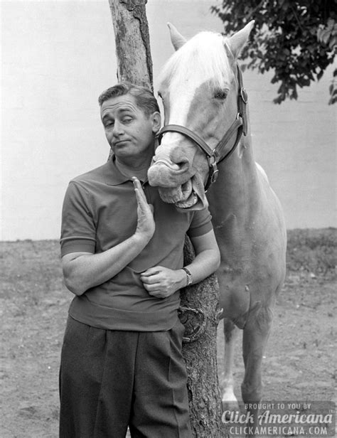 theme song mr ed mister ed theme song opening closing credits 1961 1966