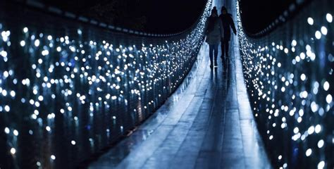 canyon lights at capilano suspension bridge returns for