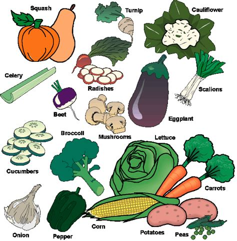 vitamin h vegetables about vitamins and minerals in vegetables avoid fried