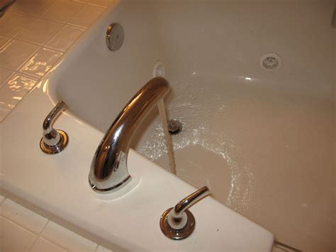ants in bathtub faucet delta to price pfister roman tub replacement terry love