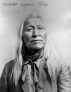 American Indian Birth Records Image Gallery Shoshone Chief