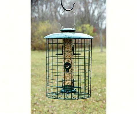 Caged Bird Feeders Woodlink Caged Seed 6 Port Bird Feeder