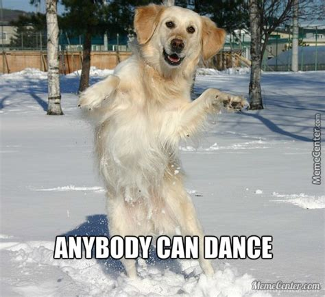 Dancing Dog Meme - dog dance by guest 56323 meme center