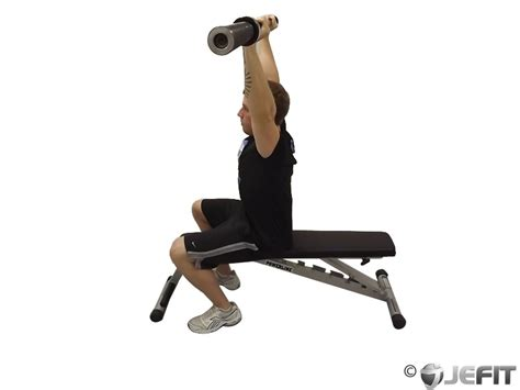 seated dumbbell bench press barbell seated press exercise database jefit best