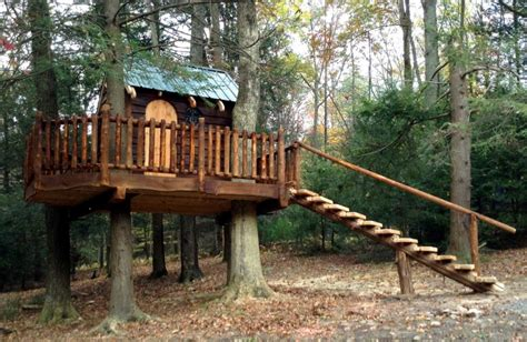 tree house builders several hints on building a tree house beautyharmonylife
