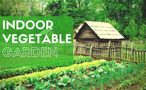 indoor vegetable gardening 37 edibles you can grow