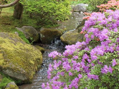 Green House Plans by Seattle Japanese Garden The Arboretum Foundation