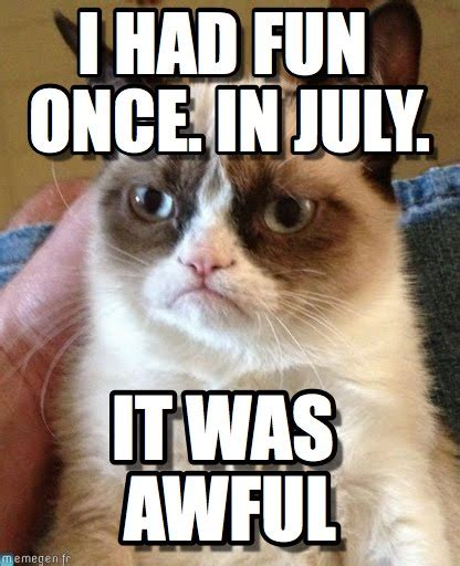 Grumpy Cat Meme I Had Fun Once - from i had fun once grumpy cat quotes quotesgram