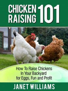 how to raise pigs in your backyard how to build a farrowing crate for a hog the o jays pig