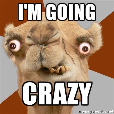 Going Crazy Meme - i m going crazy crazy camel lol meme generator