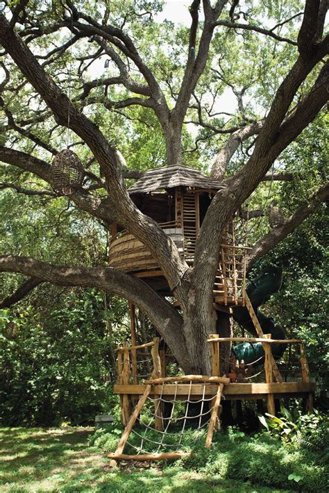 best treehouse 49 best treehouse masters