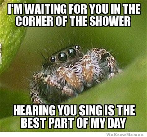 Shower Spider Meme - have some quot misunderstood spider quot jokes for when you re in