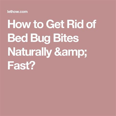 how to get rid of bed bugs bites 25 best ideas about bed bug bites treatment on pinterest