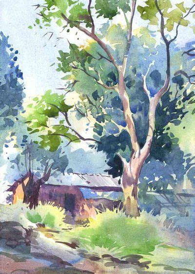 arbre peinture 224 l eau dessins aquarelles