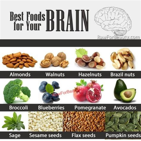 how to feed a brain nutrition for optimal brain function and repair books brain food health