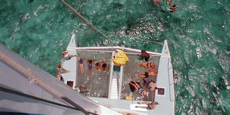 treasure island catamaran antigua galveston cruises catamaran sail snorkel excursions