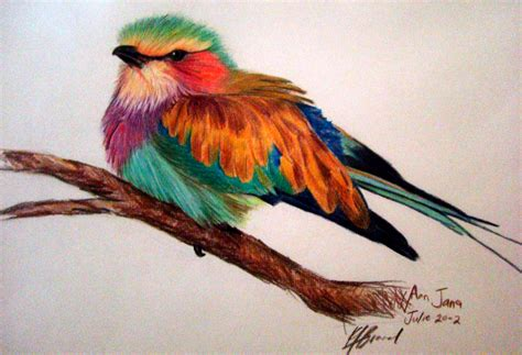 cool colored pencil drawings cool colored pencil drawings 40 creative and simple