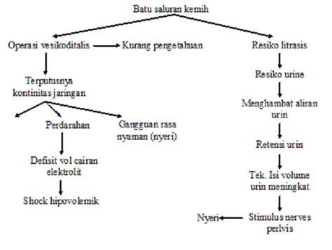 Kapita Slekta Kedokteran perawat hati askep nefrolitiasis