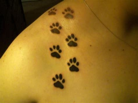 paw print tattoo placement paws prints tattoos i want or ideas for