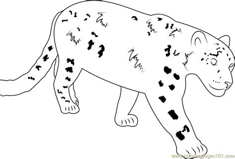 leopard coloring pages pdf beautiful snow leopard coloring page leopard coloring