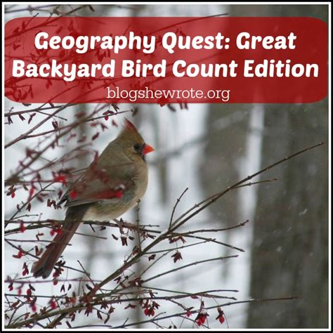 geography quest great backyard bird count edition