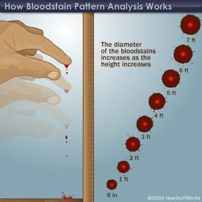 bloodstain pattern analysis chapter 10 how bloodstain pattern analysis works salud i am and crime