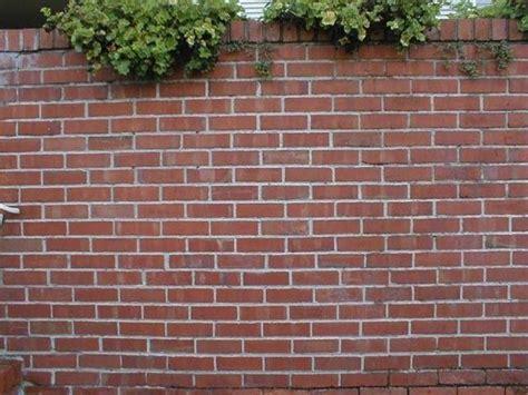 Costruire Un Muro Di Mattoni by Muro Di Mattoni Muratura