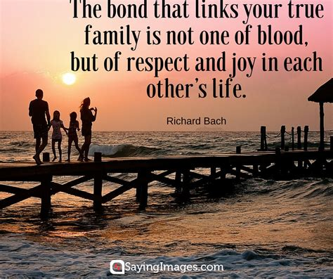 quote about family 35 inspiring quotes about family with pictures