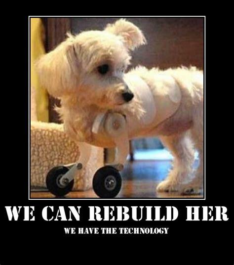 We Can Rebuild by We Can Rebuild By Doornik1142 On Deviantart