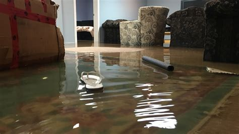 where to call if your basement is flooded cbc news