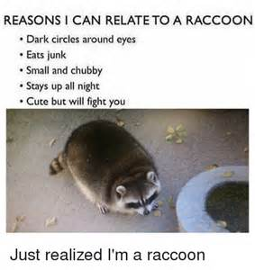 Racoon Meme - funny raccoon memes of 2017 on sizzle warehouse